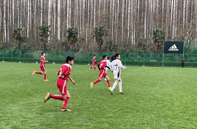 徐根宝评范志毅:你先是足球人,不要像网红一样玩直播