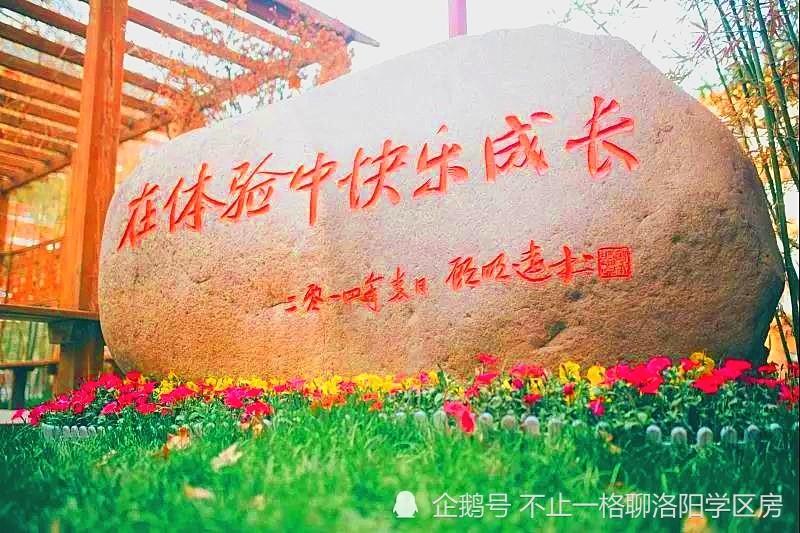 """洛阳18所学校入选""""省中小学人工智能教育实验校"""""""