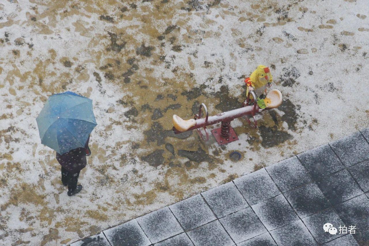 北京初雪最全图集来了!一文看遍城里城外 最新热点 第3张