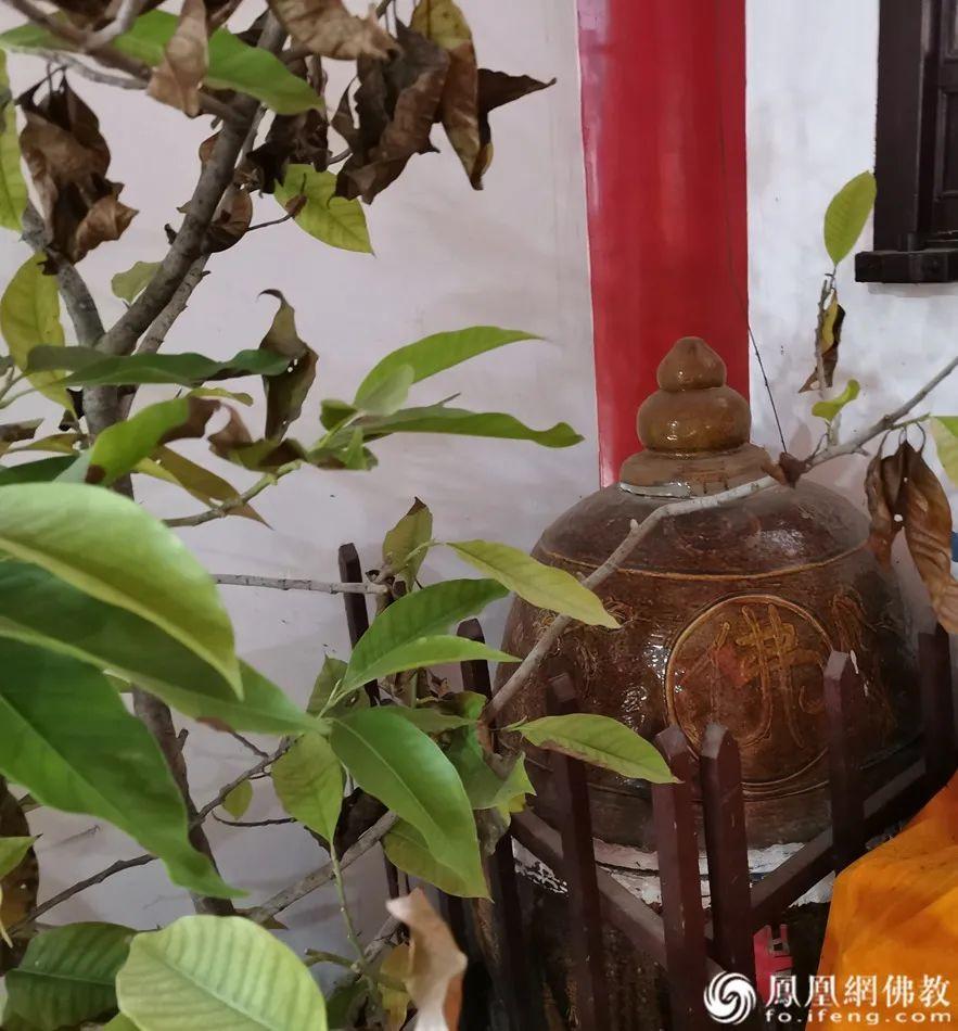 妙性师太坐化使用的缸,如今也供奉在大殿角落(图片来源:凤凰网佛教)