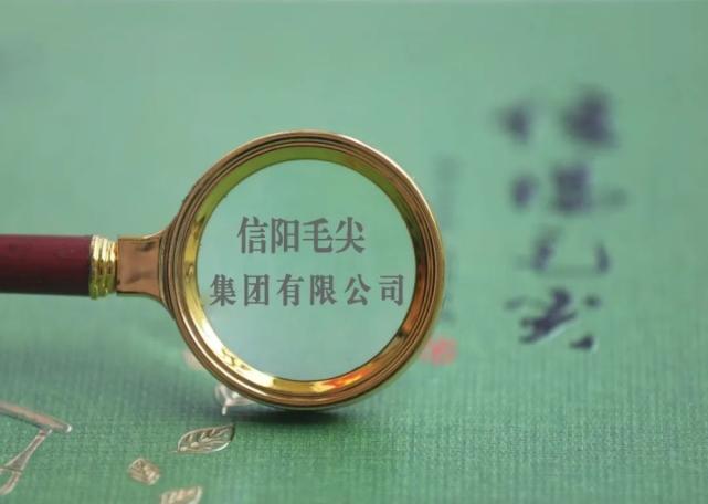 """蹭""""茅台""""失败 信阳毛尖再更名为国龙酒业"""