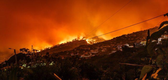 面对全球性森林防火难题,地理空间人工智能具备哪些优势?