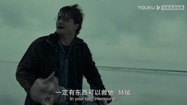 精灵多比临死前,哈利一次又一次看向赫敏,希望她能从神奇的串珠小包里找到救多比的办法,但这一次赫敏也无能为力/《哈利·波特与死亡圣器1》电影截图