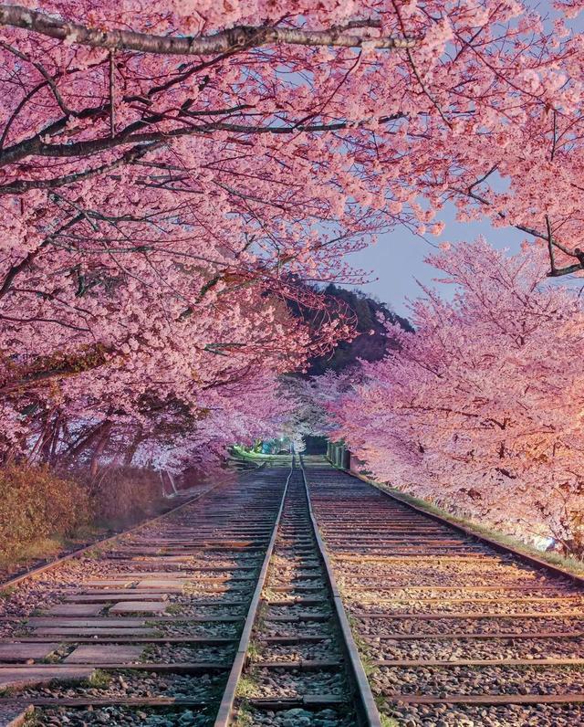 京都蹴上倾斜铁道。IG: Tabokin