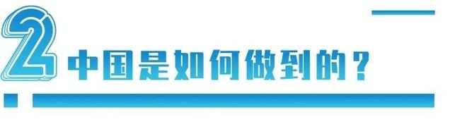 全球疯抢集装箱,才发现:96%都是中国造的