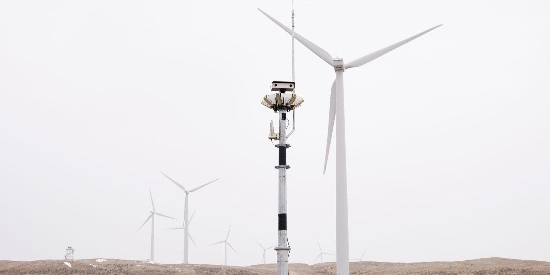 通过利用人工智能自动减少风力涡轮机,能够减少鹰的死亡