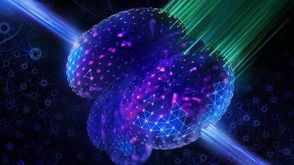 人工智能帮助最好的显微镜更好地观察、更快地工作并处理更多数据