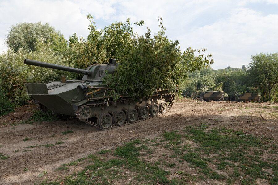 利用植物枝叶就便伪装的俄军装甲战车 资料图