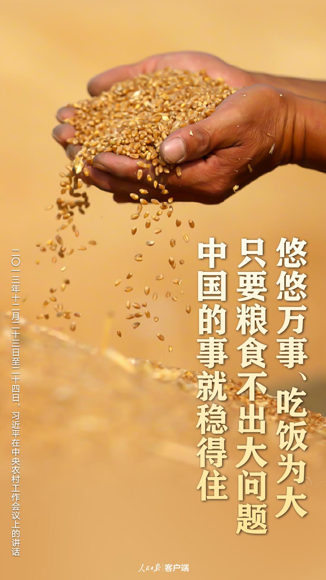 習近平:把中國人的飯碗牢牢端在自己手中