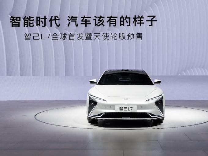 从上海车展看品牌拥抱变化之新品牌-图3