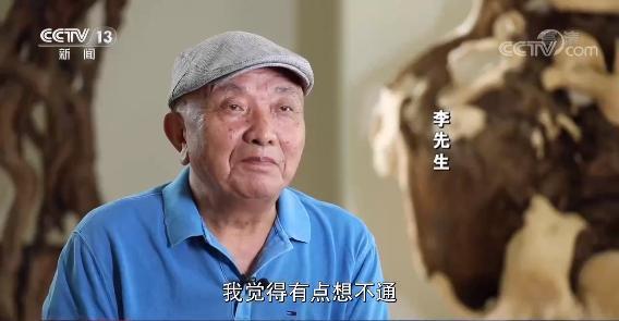 上�海老人修剪自家树被罚  树危害大还是�情僵硬执法危害大?(图1)