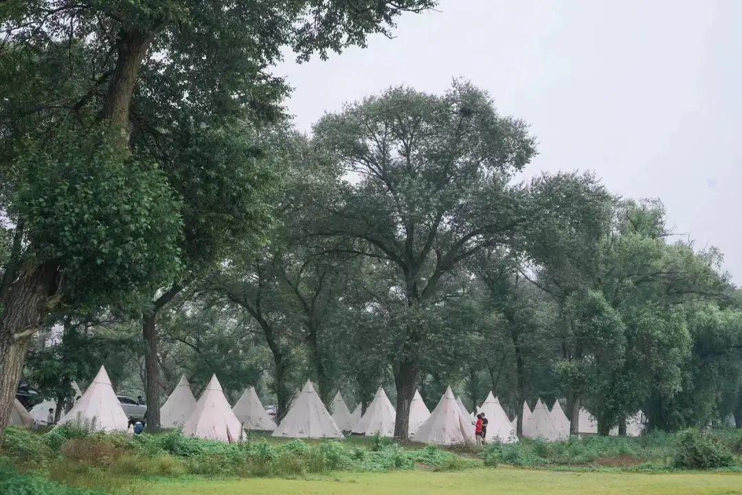 大热荒野的北京营地之一 / 受访者供图