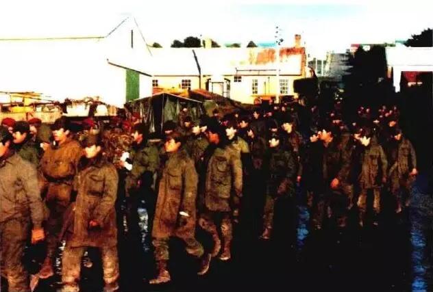 上图_ 成批投降的阿根廷士兵