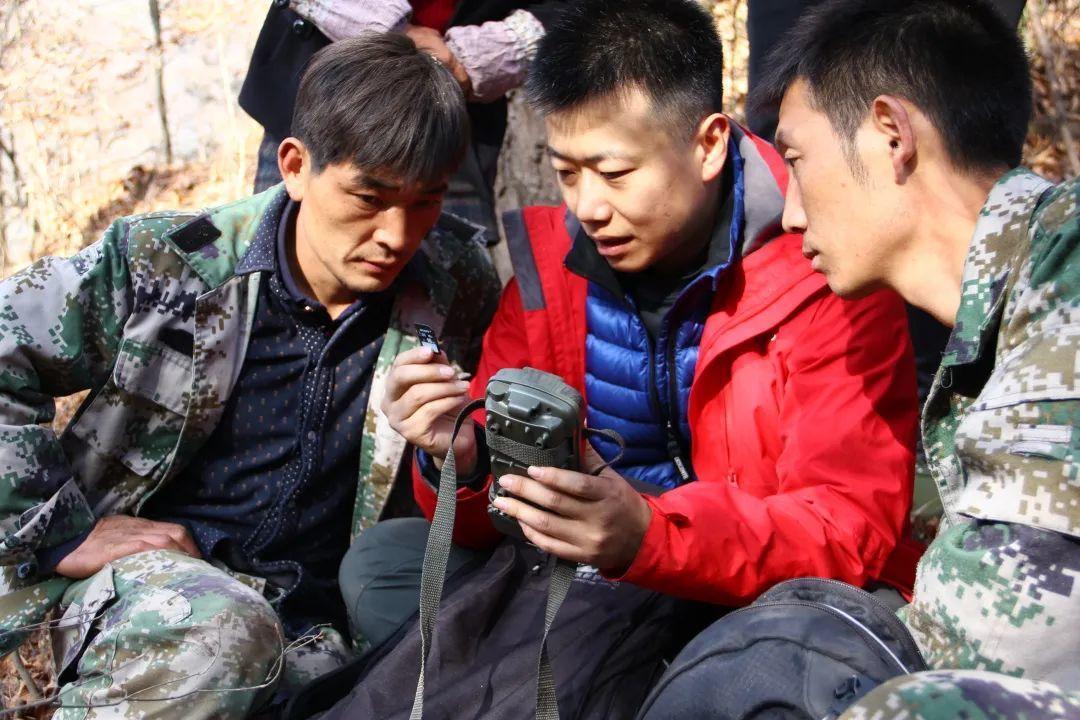 红外相机布设和数据回收