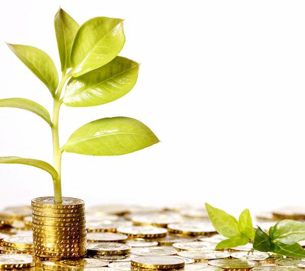 """公募基金积极布局""""碳中和"""":已有 62只相关概念主题基金,更多产品申报提速"""