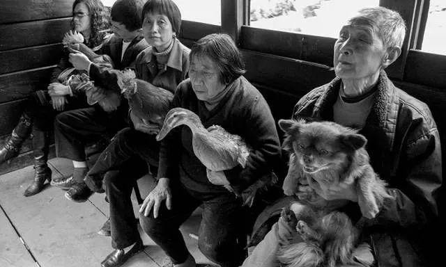40年前的春运火车 有人围桌打麻将,有人当场生孩子 最新热点 第32张