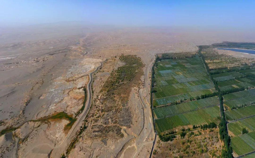图为建于1963年的阳关林场,紧挨着库姆塔格沙漠。(当地志愿者摄)