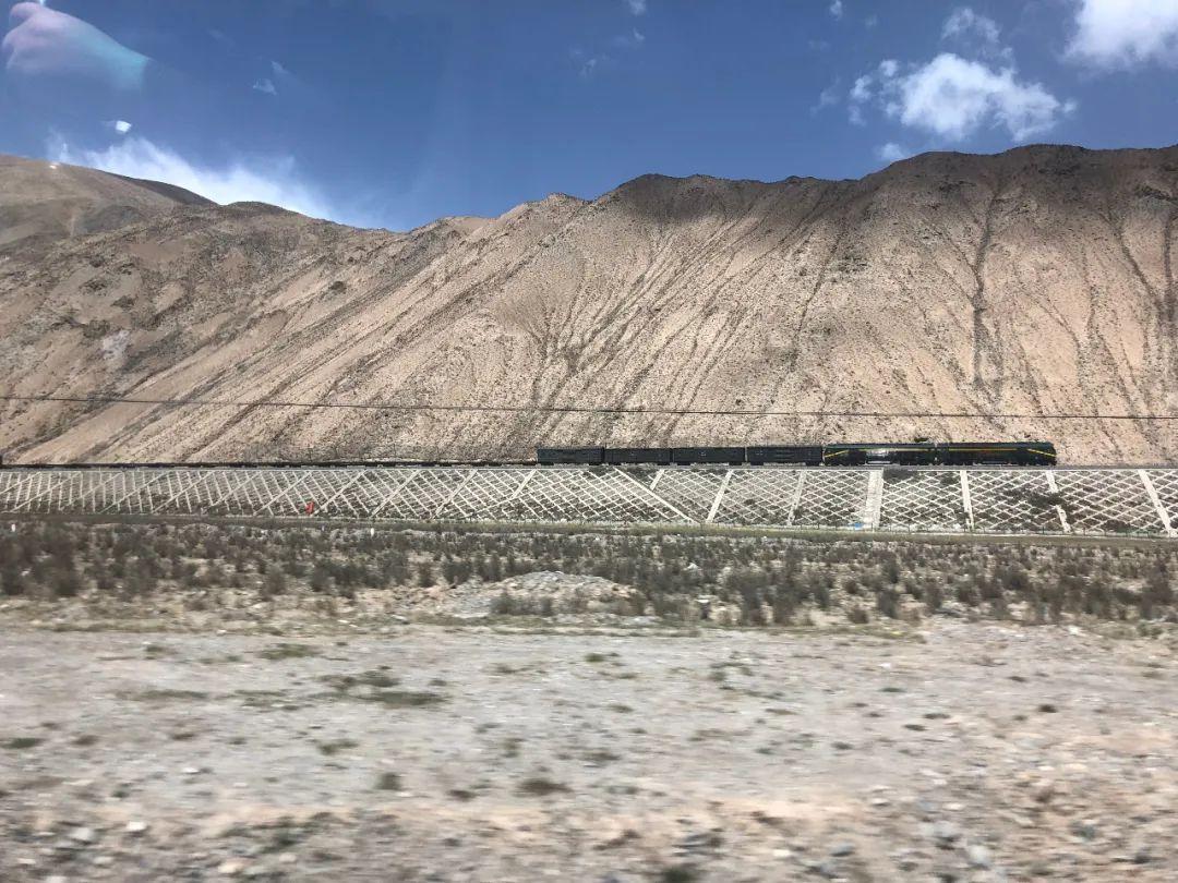 6月7日,一列火车在青藏高原飞驰。新京报记者 杜寒三 摄