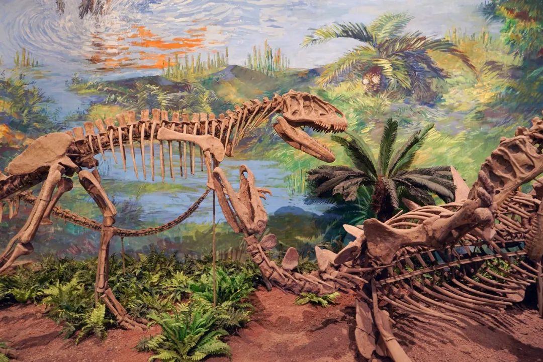 △自贡保留了很多完整的恐龙骨架/图虫创意