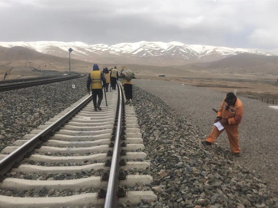 6月7日,铁路养护工人在海拔4765米的昆仑山站作业。新京报记者 杜寒三 摄