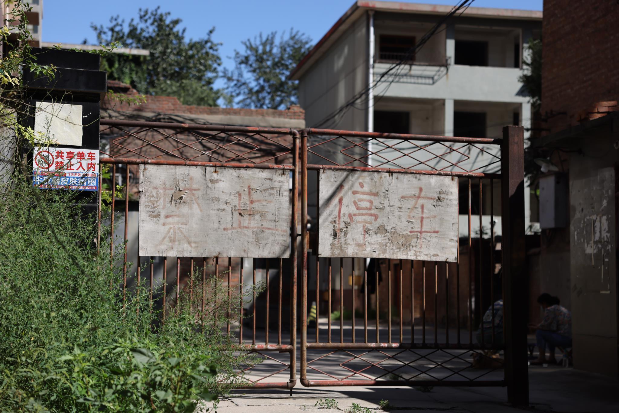 石家庄友谊北大街64号院旧城改造项目8年未动工,院内杂草丛生