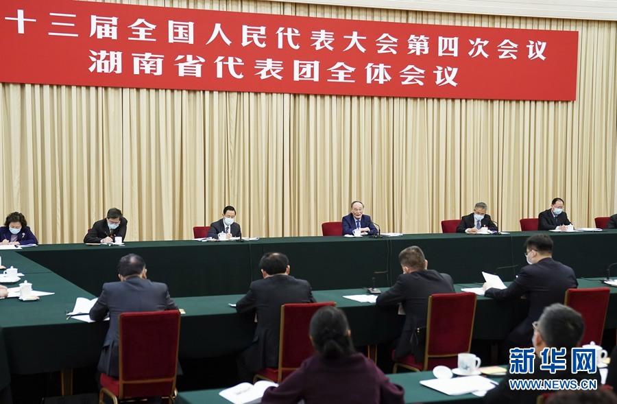 3月6日,国家副主席王岐山参加十三届全国人大四次会议湖南代表团的审议。新华社记者 燕雁 摄