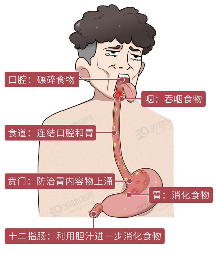 这种常见病,正悄悄烧烂5成中国人的内脏 健康 第1张