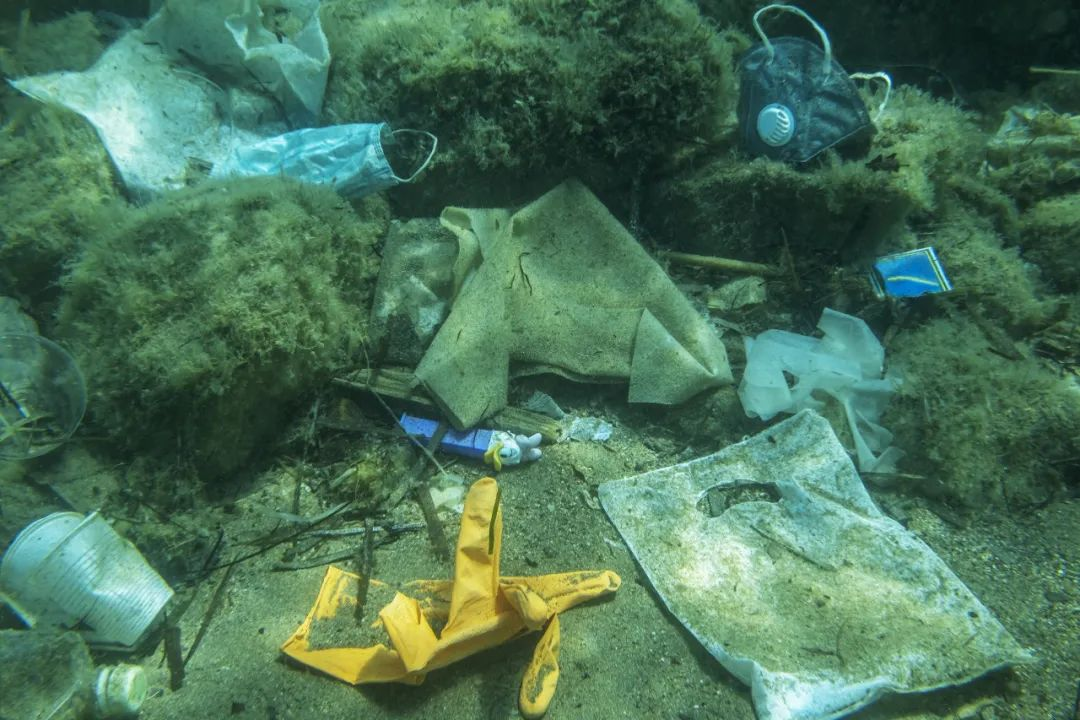 多出来的48万吨废弃口罩,都去了哪里?