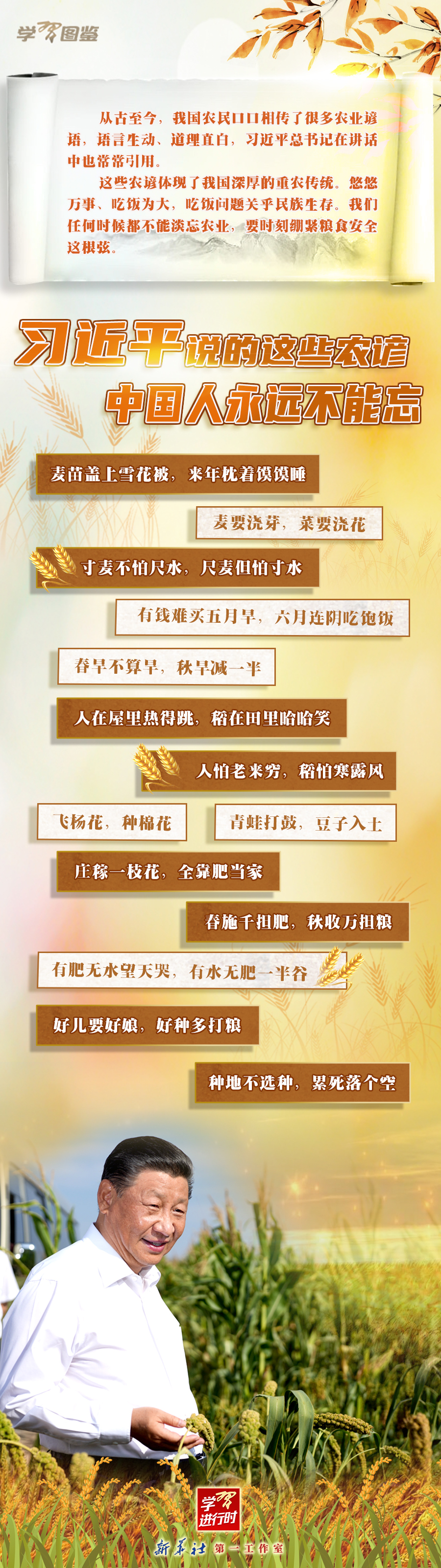 學習進行時|習近平說的這些農諺,中國人永遠不能忘