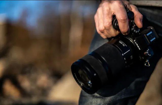 摄影圈|佳能新app用人工智能帮你选片  摄影师拍到前所未见的金色企鹅