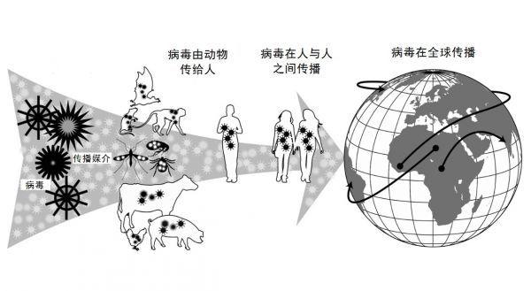 外媒:人工智能或可预测下一场人畜共患病