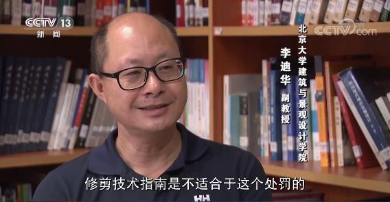 上海老人修剪自家树被罚  树危害大还是情僵硬执法危害大?(图5)