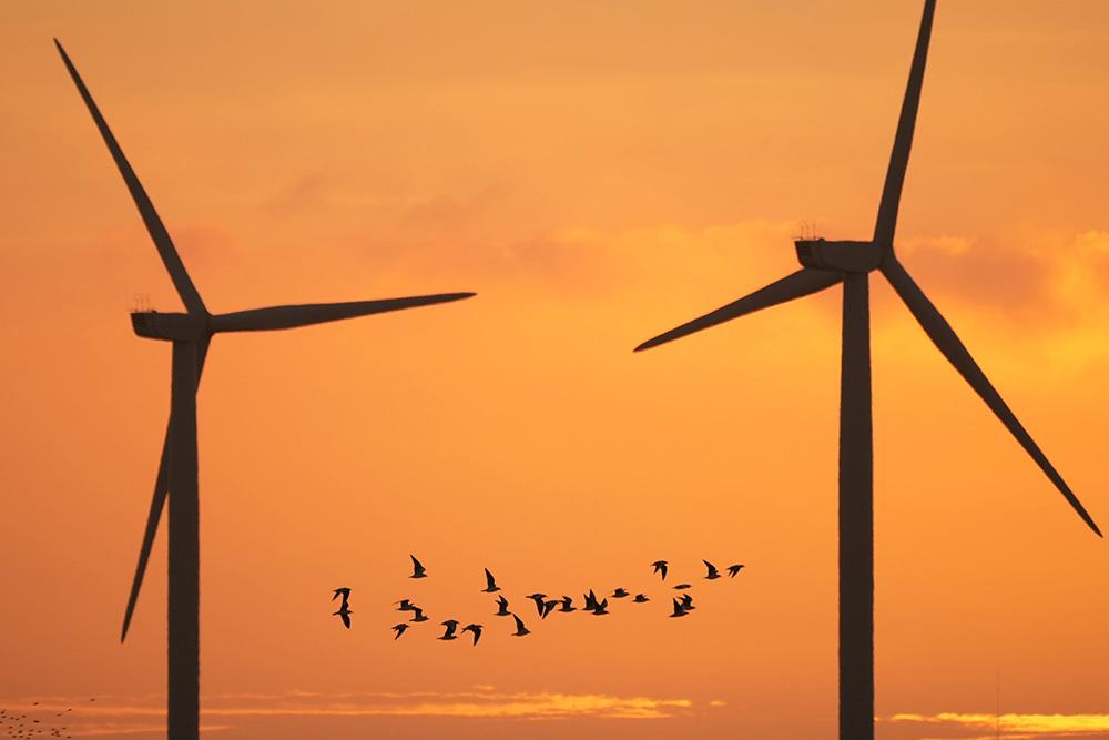 当地时间2021年10月11日,英国朗科恩,实拍默西河河口的风力涡轮机。视觉中国 图