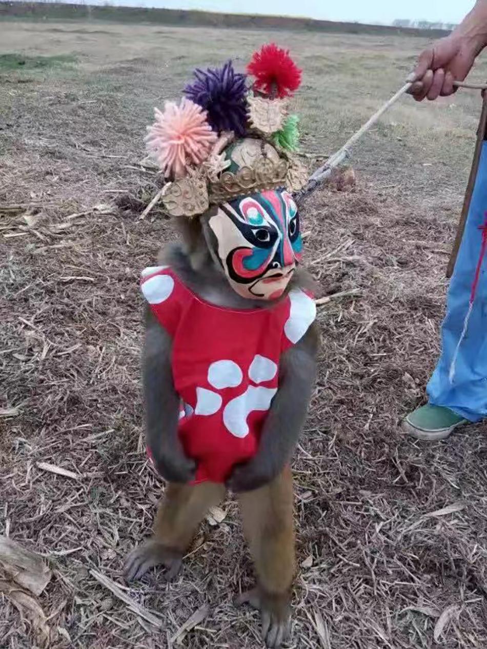 传统猴戏中的变脸