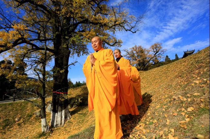 佛教诞生于印度恒河中游,就是今天尼泊尔南部与印度之间的区域,不久就传到了中亚。公元1世纪,佛教从西域传入洛阳。公元2世纪,波斯僧人安世高来华,翻译了大量小乘佛教的经文。5世纪,中国僧人法显从新疆前往印度,最后作了著名的《佛国记》。同时期中亚高僧鸠摩罗什从新疆来到凉州,住了10几年,之后再往长安,并翻译了大量的佛经。从这里也可以看出,佛教传入中国,其实是个双向互动的过程。