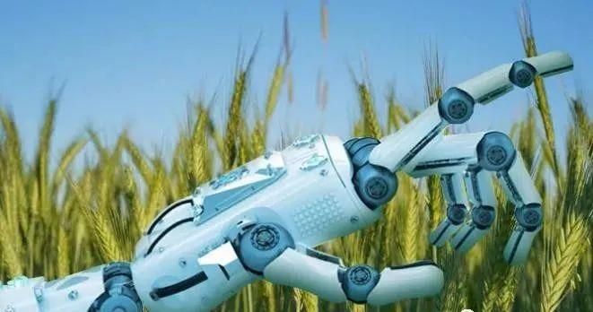 未来农业|人工智能改变农业的5种方式