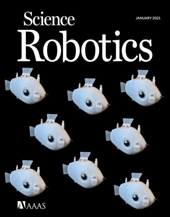 哈佛大学机器鱼登上《Science子刊》封面