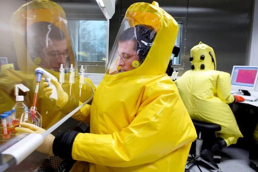 合作者在生物安全四级实验室