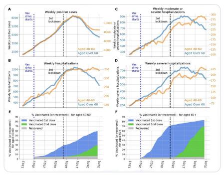 全球人口新冠免疫比例_新冠病毒免疫过程图解