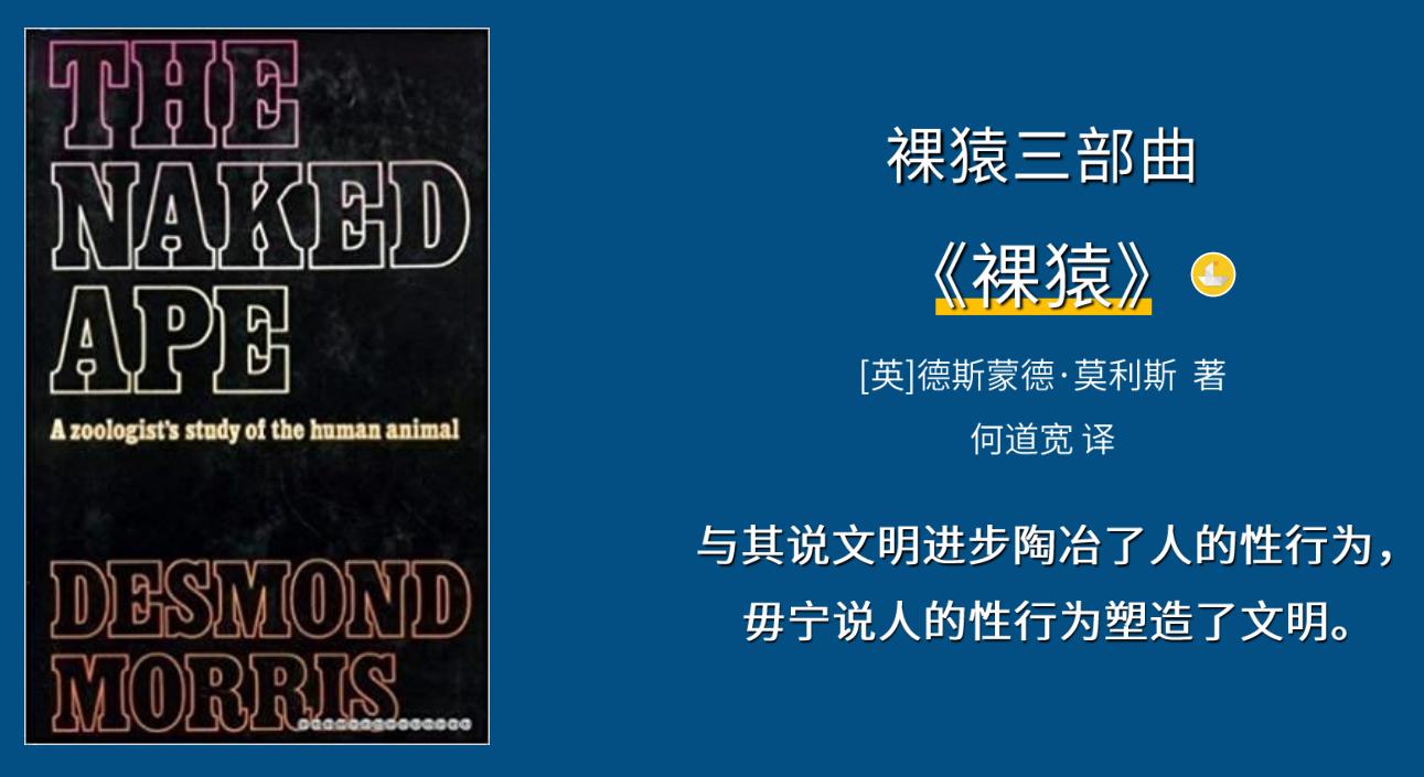 关注疫情、女性、人工智能,来看上海译文的2021全新书单