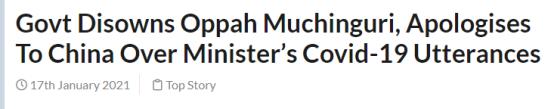 """""""新津巴布韦"""":政府否认穆欣古里的言论并向中国致歉。"""
