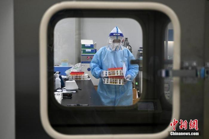 """1月8日,石家庄市全员检测核酸第三天。在河北医科大学第一医院检验中心,距离""""病毒""""最近的医护工作者们正在认真的工作。 中新社记者 翟羽佳 摄"""