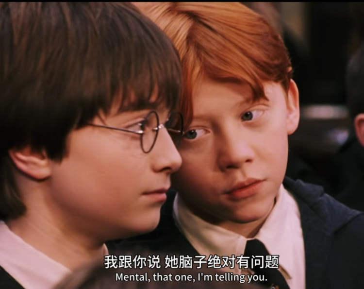 来自学渣的怨念/《哈利·波特与魔法石》电影截图