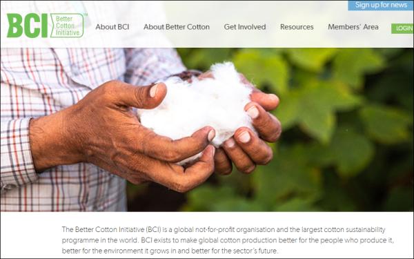 BCI官方网页