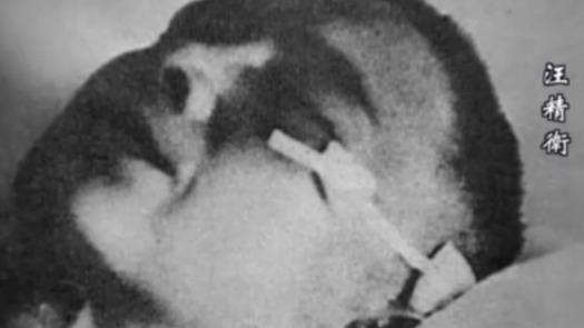 汪精卫被刺客打了三抢 张学良一脚就把刺客制伏