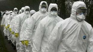 法国再爆疫情 解除禁足令一周以来发生25起聚集性疫情