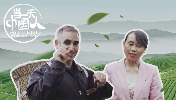 视见   哪种中国名茶是用脚踩出来的