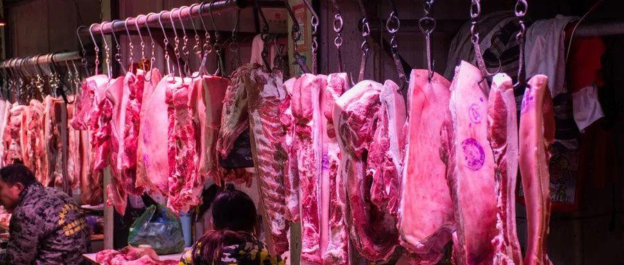 国家存的猪肉即将投放!肉从何来,存了多久?