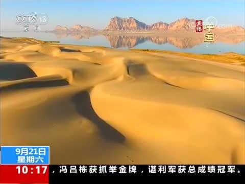 新疆图木舒克:碧水润黄沙 候鸟栖乐园