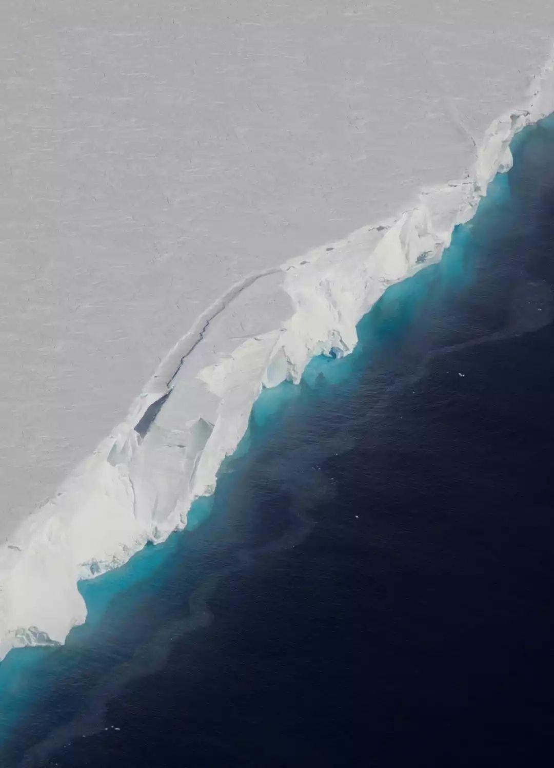 被中国游客挤爆的南极 太南了